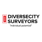 Diverse City Surveyors